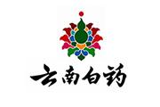 云南白药集团股份有限公司